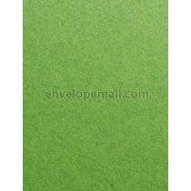 Stardream Metallic  Fairway 81 lb Text - Sheets 8-1/2 x 11