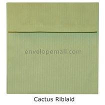 """Riblaid Cactus - Square (6-1/2 x 6-1/2"""") Envelope"""
