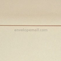 "Passport Sandstone 6 x 9"" Booklet Envelope"