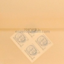 "Translucent Spring Ochre - Square (5-1/2 x 5-1/2"") Envelope"