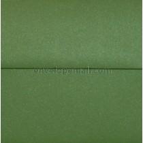 Curious Metallic Botanic 6-1/2 x 6-1/2 Square Envelope