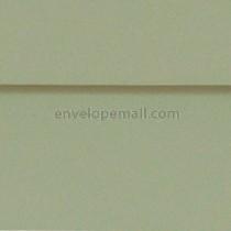 """Carnival Pine 5-1/2 x 5-1/2"""" (Square) Envelope"""