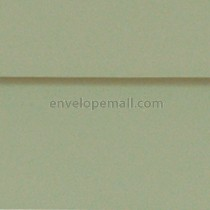 "Carnival Pine 6-1/2 x 6-1/2"" (Square) Envelopes"