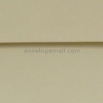 """Classic Crest Tarragon- Square (5-1/2 x 5-1/2"""") Envelope"""