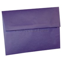 "Translucent Purple - 4Bar  (3-5/8 x 5-1/8"") Envelope"